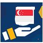 新加坡公司年审