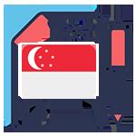 新加坡公司审计
